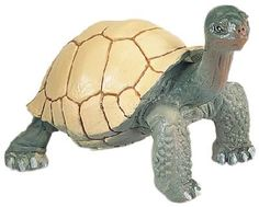 Wild Safari Tortoise at theBIGzoo.com, a family-owned toy store.