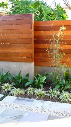A fence the dogs can't dig under!  love the mixing of wood and concrete. also the monochromatic and simple foliage.