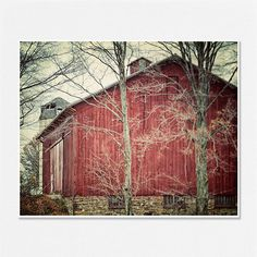 Red Barn Photography Rustic Home Decor Country by LisaRussoFineArt