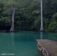 Florida Natural Springs - Beautiful !