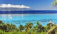 Moorea.  (From: 40 Islands You'd Love To Be Stranded On)