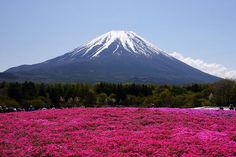 best places to photograph mount fuji