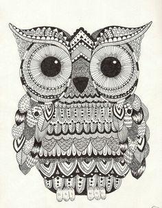 Serious Owl doodle