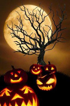 holiday, halloween night, halloween pumpkins, hallow eve, halloween background, jack o lanterns, full moon, happi halloween, happy halloween
