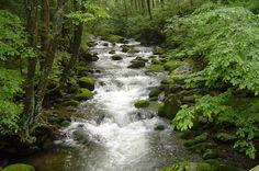mountain streams | Beautiful Mountain Streams