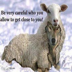 Be very careful who you allow to get close to you!