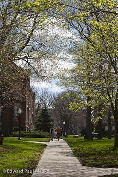 Grove City College in Spring