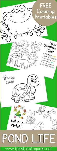 Free Pond Life Coloring Printables