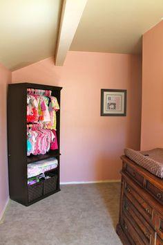 bookcase redo for closet space