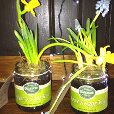 Flower pots I just made for the pub tables using our condiment pots