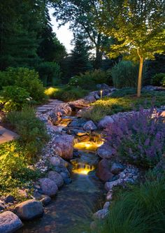 Backyard stream and landscaping