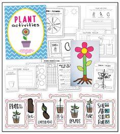 plant unit