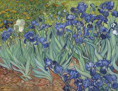 'Irises' by Vincent van Gogh (1889)
