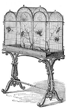 Vintage Stock Image - Fancy Victorian Bird Cage (@Matty Chuah Graphics Fairy) - Anyone up to quiling this stand of birdcages?