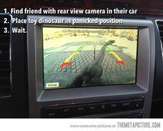 Toy dinosaur prank…