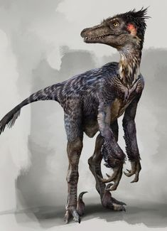 25 Concept Art and Illustrations of Dinosaurs - so much dinosaur goodness!   by Daren_Horley  and others bird, raptor dinosaur, paleontolog, feather raptor, concept art, prehistor, creatur, feathered dinosaurs, daren horley