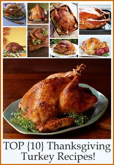 Craft-O-Maniac: Top 10 Thanksgiving Turkey Recipes    http://www.pinterest.com/pin/160159330469817258/