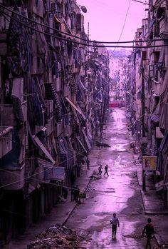 Rue violette
