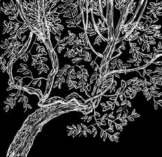 Arbre by Philippe Reymondin. Part of a project to publish one drawing a day in 2012.