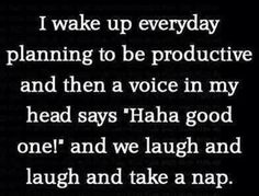 "I wake up everyday planning to be productive and then a voice in my head says, ""Haha good one!"" and we laugh and laugh and take a nap."