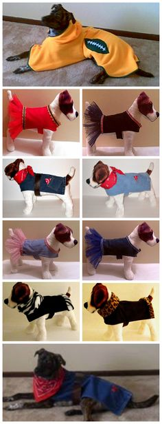 HOT DOG clothes fashions. Dog jeans, tutu, and football team poncho. Size XS - XXL. $14.99 - $27.99 Free Shipping, SHOP NOW @ http://www.haveheartdaily.ecrater.com