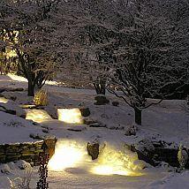 Create a Cozy Winter Water Garden Beautiful Back Yard (Winter Wonderland) RealPalTrees,com