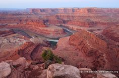 Dawn at Dead Horse Point, Dead Horse Point State Park, Utah, USA. The view of the 180 degree turn of the Colorado River from Dead Horse Point in Dead Horse Point State Park, Utah, USA is one of the most photographed scenic vistas in the world.