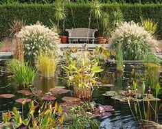 Aquatic Garden Pool, Wave Hill, Bronx NYC
