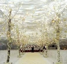 winter wonderland wedding, wedding photography, tree, wedding ideas, wedding decorations, pew decorations, romantic weddings, wedding aisles, winter weddings
