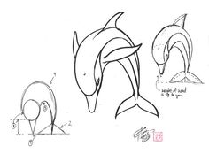 Draw a Dolphin 2 by Diana-Huang.deviantart.com on @deviantART sketch dolphin, dolphin drawing