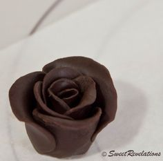 How-to for modeling chocolate and chocolate roses ;)