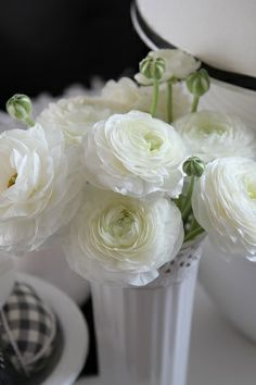 White ranunculus flo