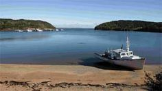 Lose yourself in the natural beauty of Nova Scotia