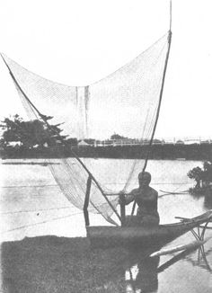 The spread-out alagamea net.