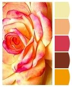 Warm up your home with these lovely colors!