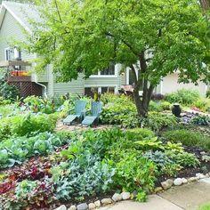 Back yard garden, where's the yard?