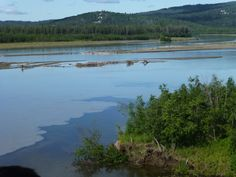 """""""Confluence of two mighty rivers [near Fairbanks, Alaska],clear water from Chena River on the right and slit laden Tanana River on the left."""" [See also http://pinterest.com/pin/175218241723427770/]"""