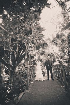 Amy Gately and Taylor Harrison Wedding {Photo courtesy of Stephen Knight Photography}