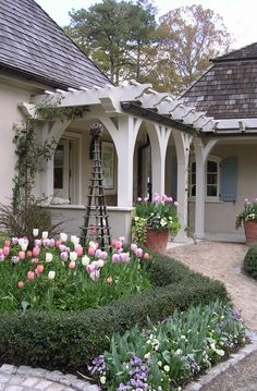 Love this corner off the house!  Pergola, obelisk, tulips, climbers, hedges, all my favorites. From family to screen porch?