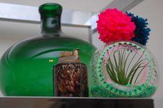 plant vessel, doodl, planter, air plant