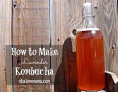 How to Make Lavender Kombucha | Shalom Mama