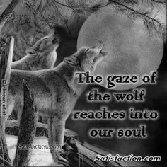 Image detail for -Native American Quotes Pictures - Photobucket