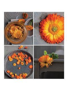Sweet Paul's Marigold Autumn