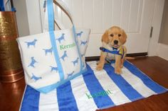 Kermit is outfitted in style with our blue dog tote and cabana stripe towel!! #toocute #monogram #puppy #themonogrammerchant