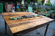 20+Creative+Ways+to+Upcycle+Pallets+in+your+Garden