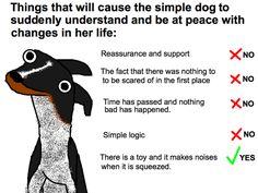 SIMPLE DOG!