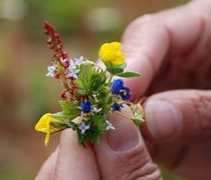Ideas for Tiny Flower Gardens #GardeninginMiniature