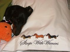 Dachshund Sleeps with Wieners Embroidered by whatsupdox on Etsy, $50.00
