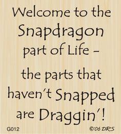 Snapdragon Greeting  DRS Designs
