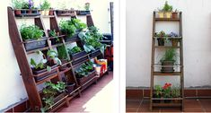 plant, ladder garden, beauti ladder, garden herb, pallet, urban garden, vegetables garden, shelv, urban farm